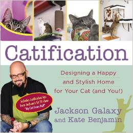 Catification by Jackson Galaxy & Kate Benjamin