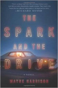The Spark and the Drive by Wayne Harrison